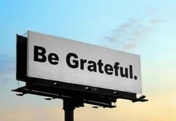 The Value of Gratitude | Wild Resiliency | Scoop.it