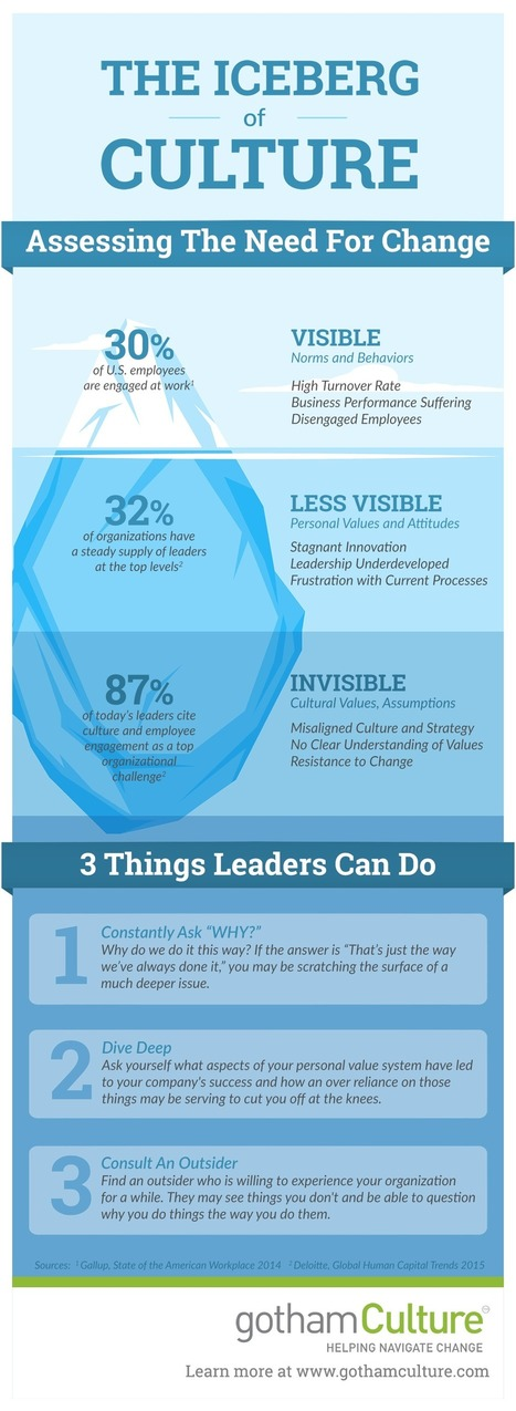 The Iceberg of Organizational Culture Change (Infographic) | Police Problems and Policy | Scoop.it