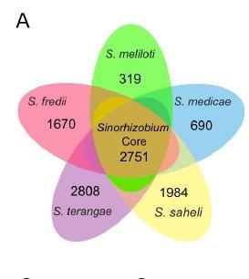 Comparative genomics of the core and accessory genomes of 48 Sinorhizobium strains comprising five genospecies. | Billion Genomes Project | Scoop.it