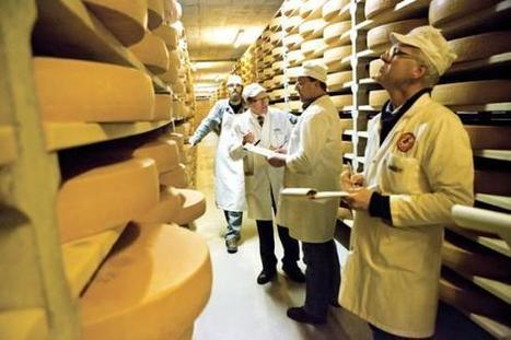 Les fromages Suisse AOP sous tous les angles | The Voice of Cheese | Scoop.it