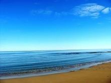 'Missing' ocean plastic pollutants may be swallowed up by marine species - Blue & Green Tomorrow | Waste | Scoop.it