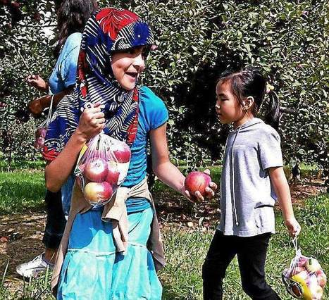 Apple picking gives ESL students a window into American culture | ESOL Students | Scoop.it