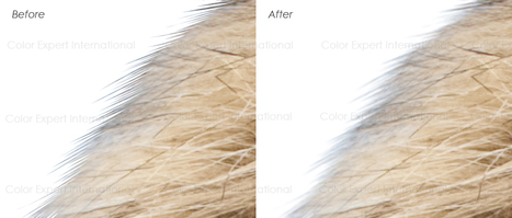 Flatness services | Clipping Path | Scoop.it