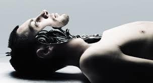 "Enframing the Flesh: Heidegger, Transhumanism, and the Body as ""Standing Reserve"" | The Long Poiesis | Scoop.it"