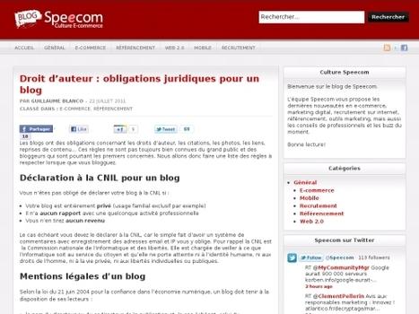 Droit d'auteur : obligations juridiques pour un blog   Websourcing.fr   Méli-mélo de Melodie68   Scoop.it