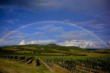 You & Flickr | Visit Montalcino | Scoop.it