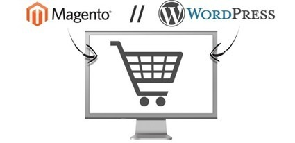 A Comparison of Magento vs. WordPress for E-Commerce Developers - 'Net Features - Website Magazine | Online Shopping | Scoop.it