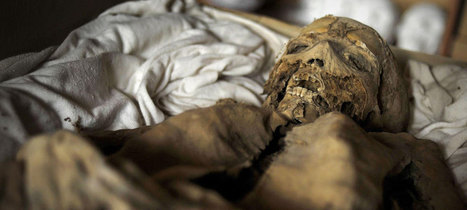 DNA of Hungarian mummies may help combat tuberculosis : Past Horizons Archaeology | Heathers Scoop | Scoop.it