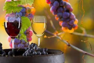 Des levures qui diminuent le degré alcoolique | Le Vin et + encore | Scoop.it