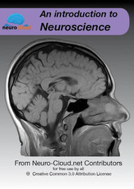 Brainstorm in Progress: OER: Neuro-Cloud: a new model of textbooks | marked for sharing | Scoop.it