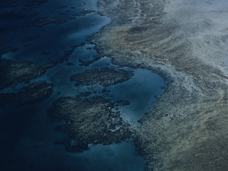 Sugar's Not Sweet for the Great Barrier Reef | Geographical Inquiry Lessons | Scoop.it