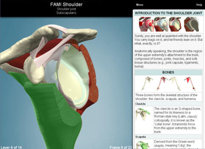 Primal Pictures' Functional Anatomy App: An Intuitive, Highly Accurate Tool for the Study of the Human Body   Human Body   Scoop.it