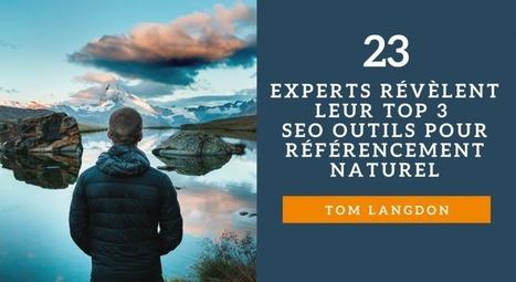 23 Experts Révèlent Leur Top 3 des Astuces SEO pour le Référencement Naturel | Chiffres et infographies | Scoop.it