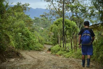 Colombia se raja en rendimiento escolar, según la OCDE | Ciencia, Comunicación, y Desarrollo | Scoop.it