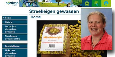 Forkenning: Wiranda Stam krijgt Wikiwijs taart | LTE, licence to educate | Scoop.it