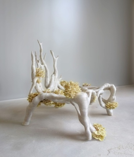 3ders.org - 3D printed 'Mycelium Chair' made from water, straw and fungus   3D_Materials journal   Scoop.it