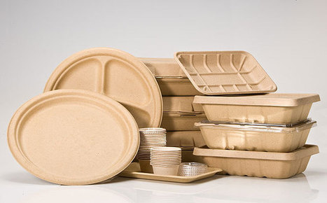 Global and China Biodegradable Packaging Industry 2014 Market Research Report - QY Research | HuidianResearch | Scoop.it