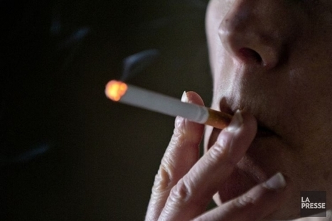 Les cigarettiers tentent d'éviter de payer 15milliardsaux fumeurs   Pierre Saint-Arnaud   Procès   Je ne fume plus!   Scoop.it