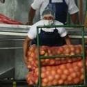 El Salvador exporta el modelo de atención empresarial CDMYPE. | Experiencias en Latinoamérica | Scoop.it