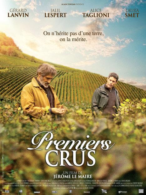 Le vin dans le cinéma français, unimaginaire fossilisé ?   Le vin quotidien   Scoop.it