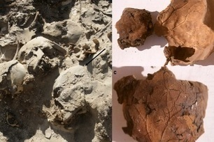 Egyptian Mummy's Brain Imprint Preserved in 'Peculiar' Case | Ancient Egypt and Nubia | Scoop.it