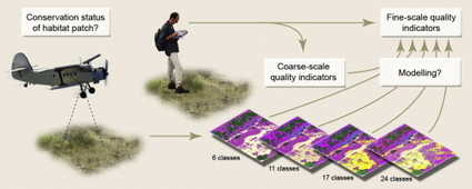 Can remote sensing estimate fine-scale quality indicators of natural habitats? 10.1016/j.ecolind.2012.01.025 : Ecological Indicators | ScienceDirect.com | Remote Sensing News | Scoop.it