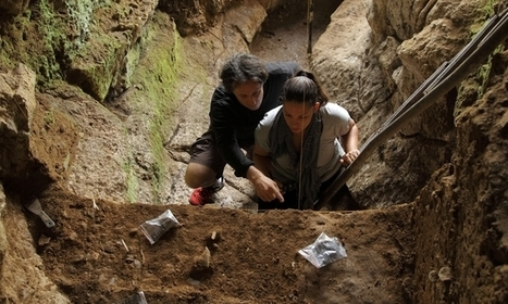 Early humans lived with Neanderthal neighbours   JWK World History   Scoop.it