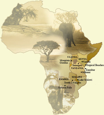 African Safaris   Africa Self Drive Safari Holiday & Tour Packages   Africa Expedition Support   Scoop.it