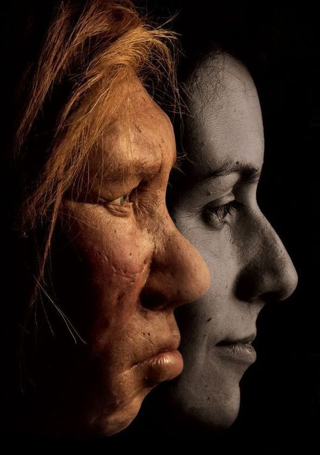 Neanderthal Genes Hold Surprises for Modern Humans | Paloma Milus | Scoop.it