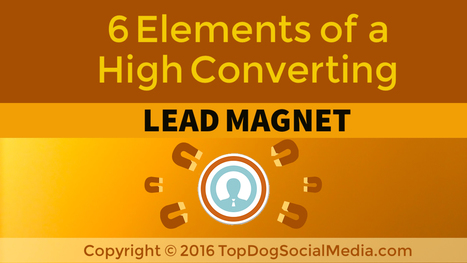 6 Elements of a High Converting Lead Magnet | Social Media, SEO, Mobile, Digital Marketing | Scoop.it