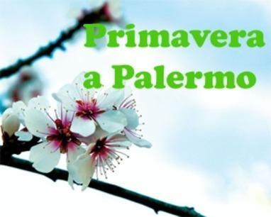 Primavera a Palermo | Assoturismo Trapani | Scoop.it
