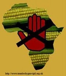 Africa, Chocolate, Bill Gates, Monsanto, and the Genetically Modified Land Grab | YOUR FOOD, YOUR ENVIRONMENT, YOUR HEALTH: #Biotech #GMOs #Pesticides #Chemicals #FactoryFarms #CAFOs #BigFood | Scoop.it