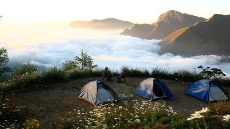 Munnar Tour Packages - A Heaven Feel That You Ever Get | Kerala Tourism | Scoop.it