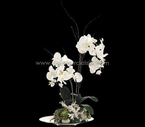 Artificial Succulent Arrangements | Artificial, Silk Trees Knowledge Center | Scoop.it
