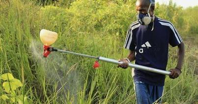 Africa realizes its agro potential | Food Security and Nutrition | Scoop.it