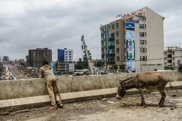 """""""Driving in Addis"""", come cambia una città - Jobsnews.it   ETHIOPIA   Scoop.it"""