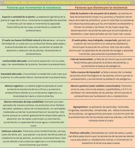 TEORIA DE LA TROFOBIOSOS | Agrologia | AGRICULTURA ORGANICA | Scoop.it