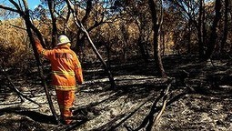 Clear and present danger | smh.com.au | Year 8 Geography - NSW | Scoop.it