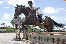 Florida Town Where Wealthy Equine Enthusiasts Saddle Up | Home & Horse | Scoop.it