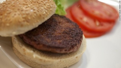 Have a taste of the world's first stem cell burger | Embodied Zeitgeist | Scoop.it