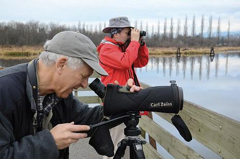 City birders spot climate change impact | Climate change challenges | Scoop.it