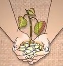 How to Put Your Money Where Your Heart Is | Children-Education,Safety,Food,poverty. | Scoop.it