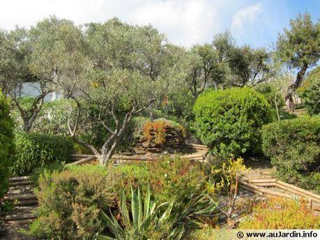 Les plantes du soleil | Eco-tourisme | Scoop.it