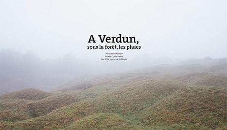 A Verdun, sous la forêt, les plaies - Le Monde | Ressources pédagogiques sur le Centenaire de la Première Guerre Mondiale | Scoop.it