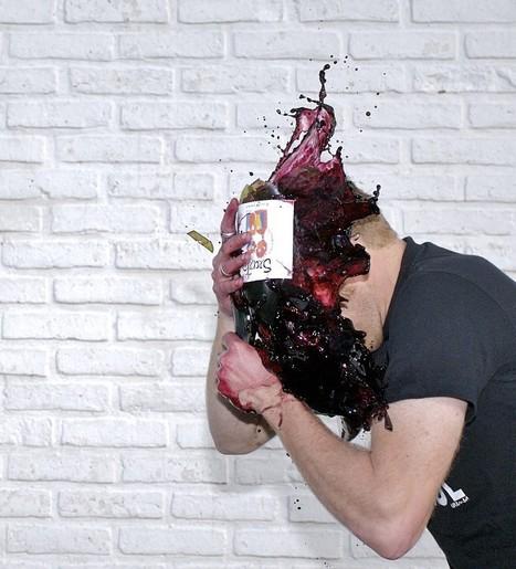 Pesticides dans les vins Excell révèle ses résultats - Lavigne-mag | Abeilles, intoxications et informations | Scoop.it