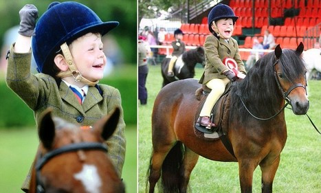 Just champion! Harry, 3, rides his way into history | horses | Scoop.it