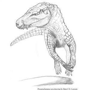 Ancient dino-eating croc had huge teeth and a dog's face | Skylarkers | Scoop.it