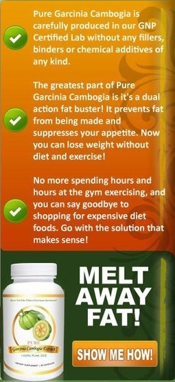 Diet Supplements and Appetite Suppressant Pills   Wonders of weight loss motivation   Scoop.it