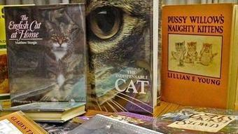 Curiosity (or lack thereof) kills Glendale library's cat collection   LibraryLinks LiensBiblio   Scoop.it