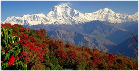 Nepal Tours Trekking Package   Trekking in Nepal   Scoop.it